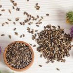 Milk Thistle- The herb that your liver will love